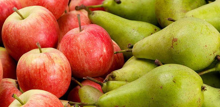 Болести јабуке и крушке у складишту